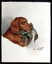 "Jean Herblet French 17""x13"" Original Watercolor Irish Setter - Green Winged Teal"