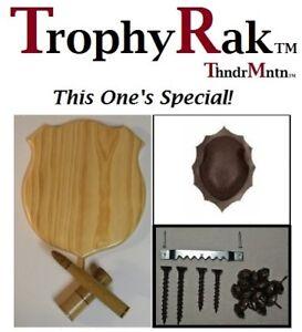 TrophyRak Deer Antler Rifle/Shotgun Shells  Plaque Kit with Brown Skullcap