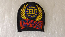 PEGASO DIESEL TRUCKS    embroidered applique patch sew on