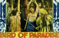 Bird of Paradise 1932 Dolores del Rio, Joel McCrea  Adventure Romance DVD