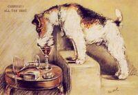 Fox Terrier - MATTED Dog Print - Lucy Dawson NEW