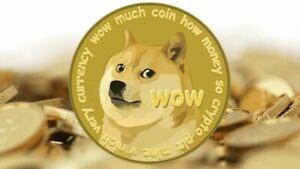 100 Dogecoin