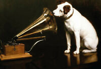 His Masters Voice Perro Dog Letrero de Metal Arqueado Tin Sign 20 X 30CM