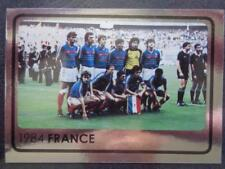PANINI EURO 2008 - 1984 FRANCIA STORIA CAMPIONATO EUROPEO #530