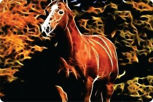 Horse Wild Fire Animal Mystical Rodeo Vanity Novelty Wall Art Aluminum Plaque
