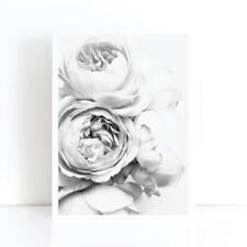 Peony Peonies Flower Art Print Poster Canvas Scandi Blush Black White(pcint)Wall