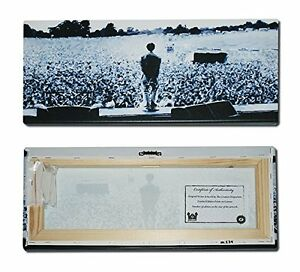 ***Oasis - Liam Gallagher - Slane Panoramic - Limited Edition Canvas - Iconic***