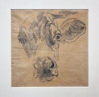 Josef Wenglein (1845-1919) Bleistiftzeichnung, Nachlass-Stempel, Kopf einer Kuh
