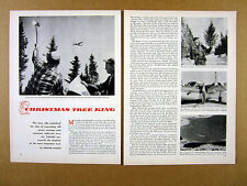 1957 Story of Roy Halvorson Duluth MN Christmas Tree Business print article