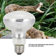 Reptile Amphibian Pet Light Heating Lamps Lizards Snake Feeding For Bulbs Heater