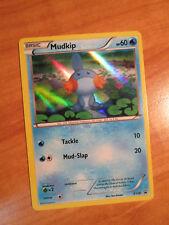 PL Pokemon MUDKIP Card BLACK STAR PROMO Set XY38 Hoenn Collection Box XY Holo