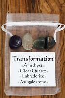 Transformation Crystal Set Amethyst Clear Quartz Labradorite Mugglestone Renewal
