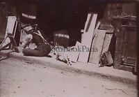 Egipto El Cairo Foto snapshot Foto Vintage Citrato Aprox 1900