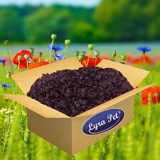 10 kg Rosinen 10000 g für Futterzwecke Wildvogelfutter Top Qualität Lyra Pet®