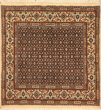 Oriental Carpet Real Hand-Knotted Persian Carpet (120 x 120)cm NEW Brücke 3273