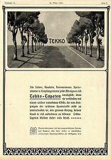 Tekko-Tapeten mit vornehmen Effekt für Salons *  Historische Annonce von 1903