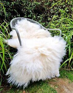 XXXL A+++ Genuine Fluffy Pelt British Cream Sheepskin Rug - 120cm by 75cm (2986)
