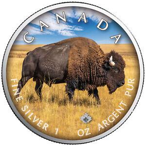 Trails of Wildlife 2021 Bison Maple Leaf 1 OZ Silver Canada colour