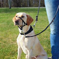 Black Top Trainer Training Harness Dog Head Harness XL
