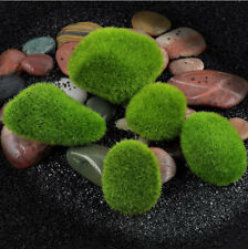 5x Green Moss Home Garden Plant Potted Ornament Artificial Landscape Decoration