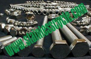 MOTO GUZZI ELDORADO AMBASSADOR STAINLESS KIT! bolts screws kit loopframe