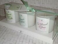 3 Scented Ivy Botanicals Candle Set