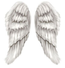 Framed Print - Beautiful White Feather Angel Wings (Picture Poster Art Biblical)