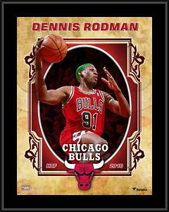 "Dennis Rodman Chicago Bulls 10.5"" x 13"" Hardwood Classics Player Plaque"