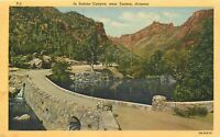 Linen Postcard AZ H033 In Sabino Canyon near Tucson Arizona Curteich