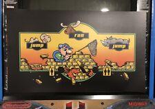 Zoo Keeper Control Panel Overlay Art Arcade Artwork Decal Sticker Cpo Taito