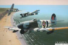 Aviation Art Print  signed ltd ed Typhoon Fighters  Normandy Landings d day