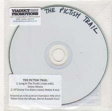 (FF10) The Pictish Trail, Long In The Tooth - 2013 DJ CD