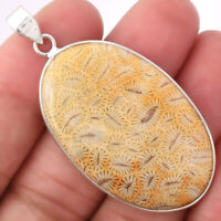Natural Ant Fossil Coral 925 Sterling Silver Pendant Jewelry 8322