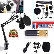 BM800 professionnel Studio Microphone à condensateur Support de bras Filtre