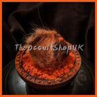 JACKAL HORN Siyar Singhi Ritual Wicca Pagan Spells Charm Witch Black Magical Hex