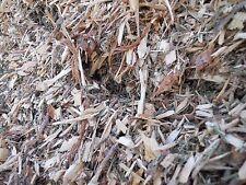 Med FR Box (2+ Gallons) Colorado Spruce Smoking/Garden Wood Chips/Mulch. 5+ LBS.