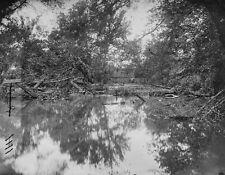 View of Stream Battlefield Bull Run Manassas Virginia 8x10 US Civil War Photo