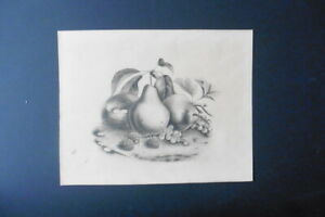 FRENCH SCHOOL 19thC - STILL LIFE WITH FRUIT AND BIRD'S NEST - MONOGR. PENCIL