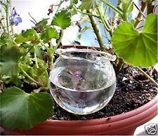 8 Stück Durstkugel Bewässerungskugel Gießhilfe für Pflanzschalen Top Qualität