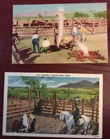 Lot Of 2 Vintage Linen Postcards BRANDING TIME ON THE RANGE COWs COWBOYS  Horses