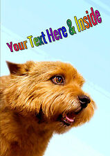 PERSONALISED NORWICH TERRIER DOG BIRTHDAY FATHERS DAY etc CARD Illus Insert