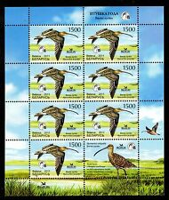 2011. Belarus. Bird of the year. Eurasian Curlew. Sheet/Pane. MNH
