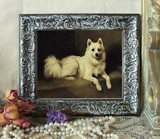 Emms A White Pom Pomeranian Dog Horse Print  Style Framed 11X13