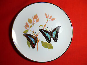 Butterflies of the Aust Garden BLUE TRIANGLE Ltd Ed COLLECTORS PLATE Tony Oliver