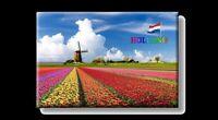 Holanda Molino de Viento con Tulipanes Foto Imán Países Bajos Souvenir, New