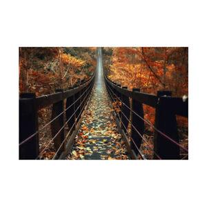 Autumn Forest Wooden Bridge Backdrop Decor Photographic Background 5x3ft