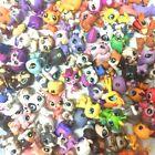"HASBRO LPS Littlest Pet Shop Lot Random 5PCS 2.0"" Figure Kid Doll Toy Xmas Gift"