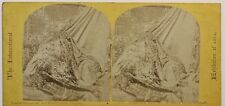 Londres Expo universelle 1862 Tissus indien Indes Photo Stereo Vintage Albumine