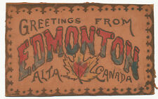 Edmonton Alberta Canada * Leather Post Card Greetings ca 1905 Hand Colored