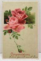 Congratulations Roses Embossed Postcard B19